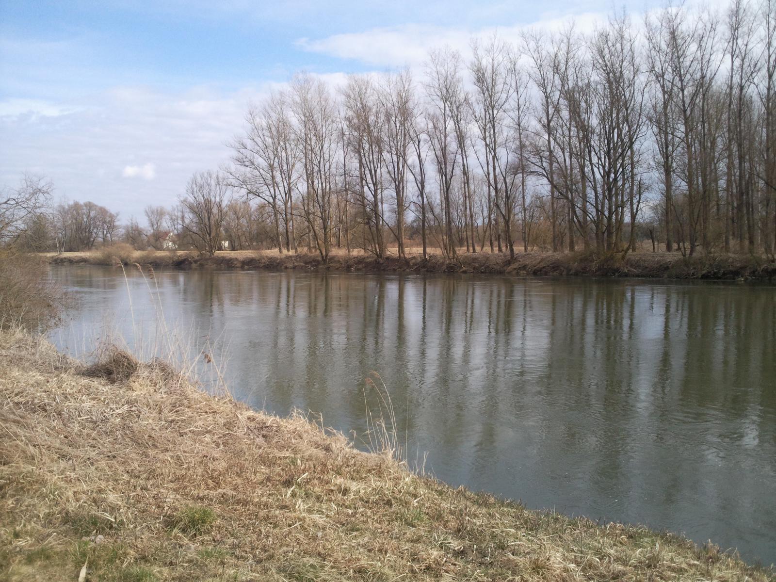 img_donau-und-altwasser (5)
