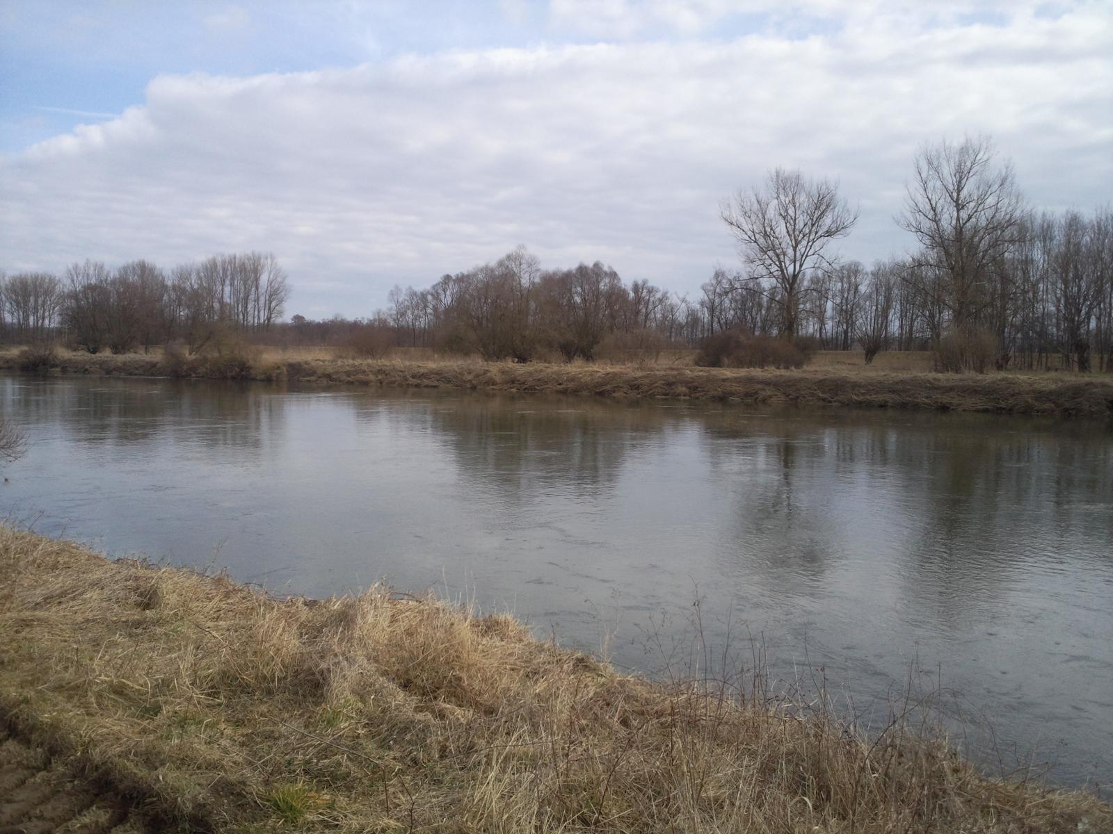 img_donau-und-altwasser (6)