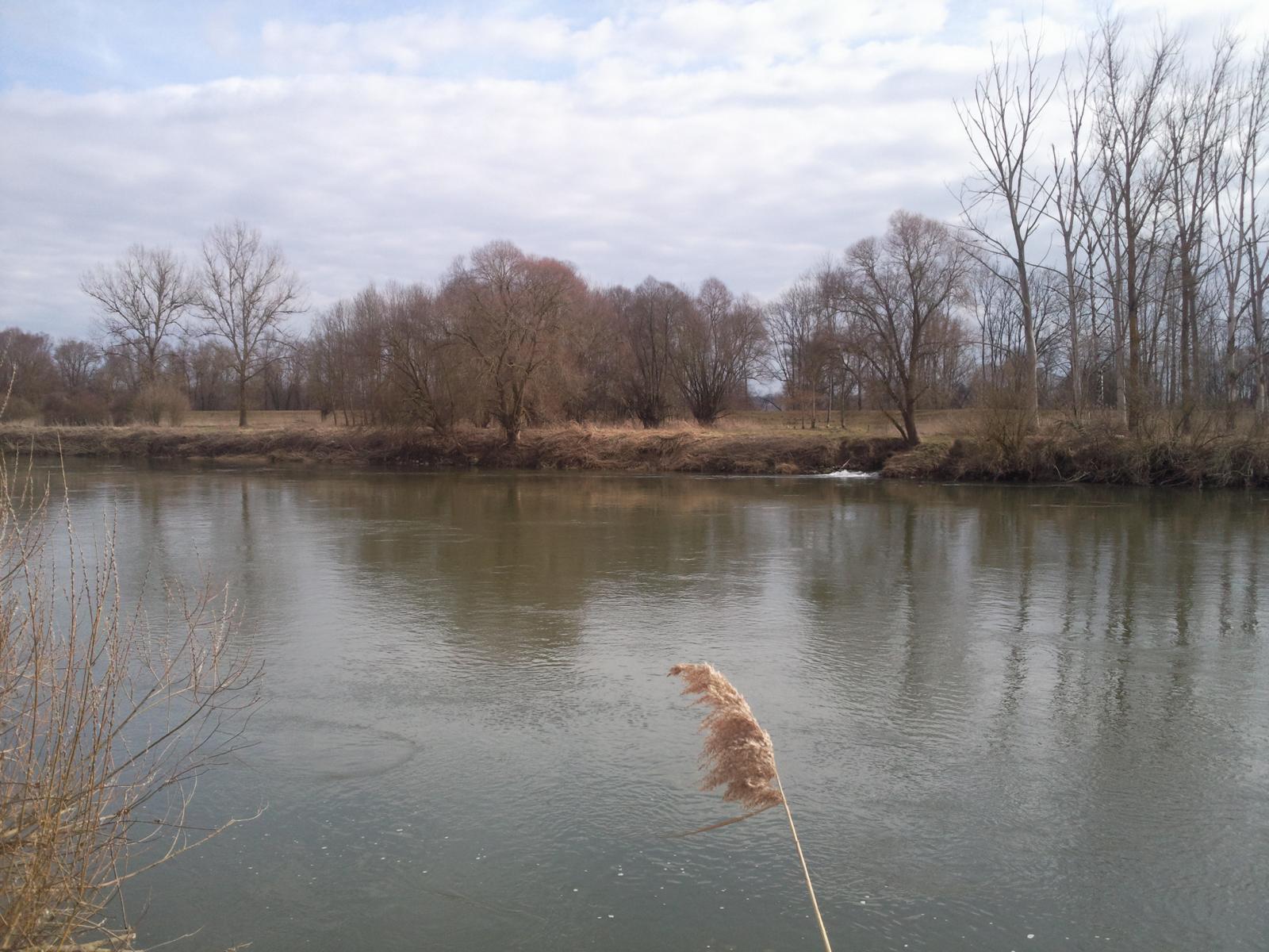 img_donau-und-altwasser (7)