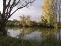 img_donau-und-altwasser (1)