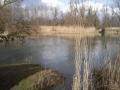img_donau-und-altwasser (19)