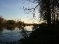 img_donau-und-altwasser (2)
