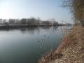 img_donau-und-altwasser (4)
